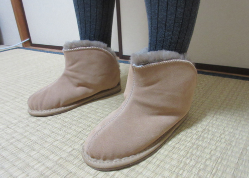 roomshoes7